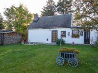 Ferienhaus mit Garten und 2 Terrassen, Ferienhaus in Lubmin (Seebad) - kleines Detailbild