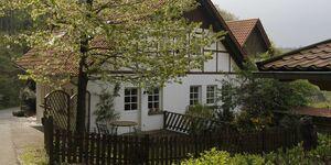 Ferienhaus Disse in Horn-Bad Meinberg - kleines Detailbild