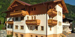 Landhaus & Appartementhaus HAUSSTEINER, Ferienwohnung Karoline in Dorfgastein - kleines Detailbild