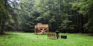 Waldkorb in Friedrichsruh - kleines Detailbild