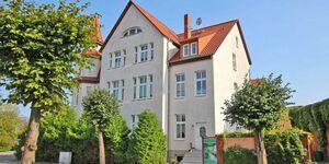 Ferienwohnungen Neustrelitz SEE 9390, SEE 9391 - Sonnenblume in Neustrelitz - kleines Detailbild