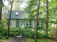 Landhaus Victoria, Muschel in Boltenhagen (Ostseebad) - kleines Detailbild