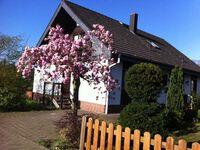 Apartment Am Haselborn in Wolfsburg - kleines Detailbild