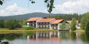 Kreuzbachhof - Ferienwohnung Maulhardt in Haidmühle - kleines Detailbild