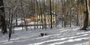 Dat Waldhus, Ferienwohnung Waldstube in Plau am See - kleines Detailbild