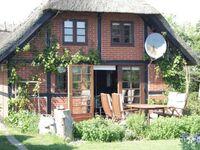 'Spitze'-Angler-Ferienwohnung in Marielyst - kleines Detailbild