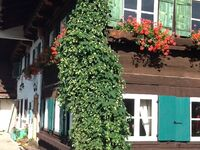 Rosenhof Allgäu - bed and breakfast Rosenrot in Görisried - kleines Detailbild
