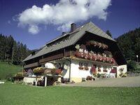 Pension Schweizer Gisela Imberi, Dreibettzimmer mit Etagentoilette und Etagenbad in Oberried OT Hofsgrund - kleines Detailbild