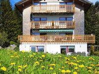 Haus Annette, Top 1 in Schröcken - kleines Detailbild