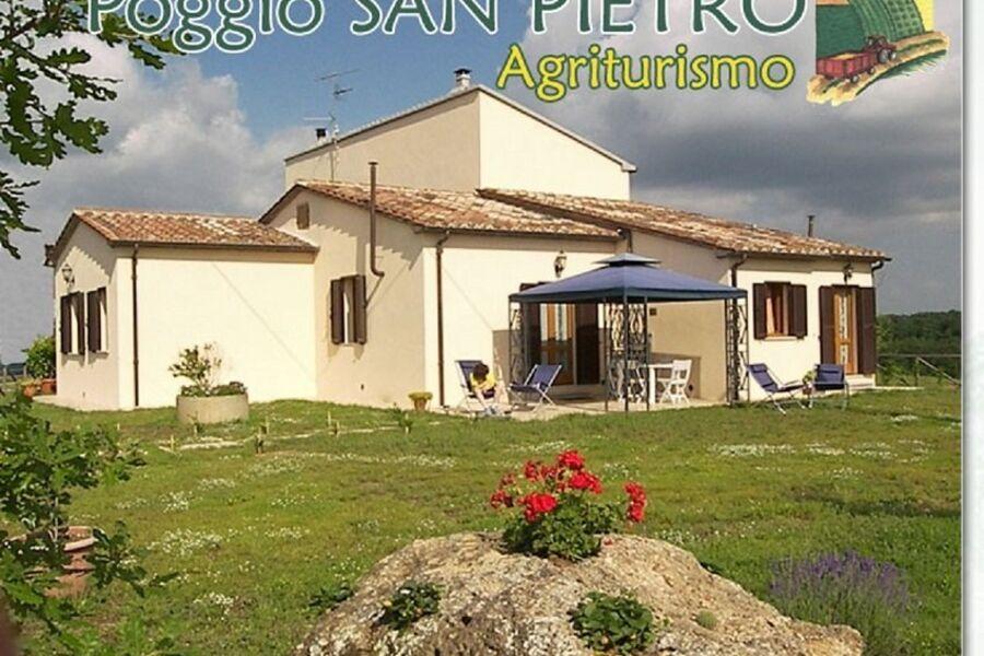 Poggio S. Petro ( LEccio / Gelso)