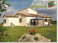 Poggio San Pietro - Ferienwohnung Il Leccio in Pitigliano - kleines Detailbild