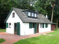 Ferienhaus 'Wald-Idyll' in Molbergen-Resthausen - kleines Detailbild