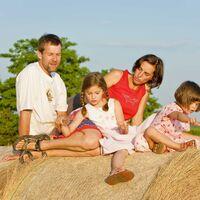 Vermieter: Sommer in Laasow auf dem Feld vorm See