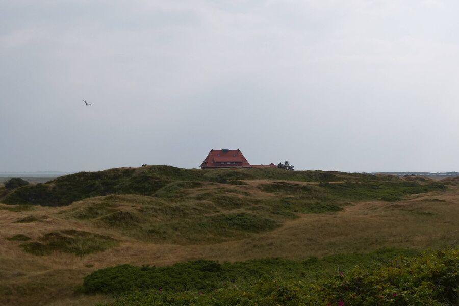 Spiekeroog die grüne Insel