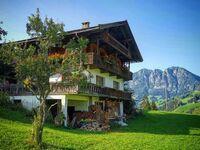 Ferienhaus Larch Inneralpbach, Ferienhaus bis max. 12 Personen in Alpbach - kleines Detailbild