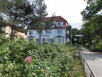 Schwarzer Bär Whg. Bär 01 in Boltenhagen (Ostseebad) - kleines Detailbild