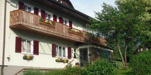 Ferienwohnungen  Haus Elisabeth, Ferienwohnung Sarstein 1 in Bad Goisern am Hallstättersee - kleines Detailbild