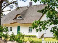 Ferienhaus  Haus am See, FH Haus am See in Loddin OT Stubbenfelde - kleines Detailbild