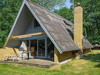 Ferienhaus in Aakirkeby, Haus Nr. 60052 in Aakirkeby - kleines Detailbild