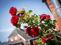 Magisterhof, Hausteil 6 (ID 300) in St. Peter-Ording - kleines Detailbild