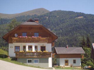 Almhof Stramer in Afritz am See - Österreich - kleines Detailbild