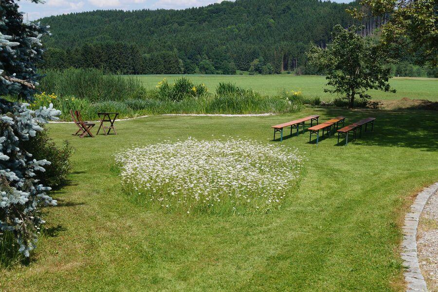 Birkethof im Frühling