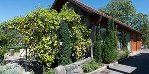 Ferienhaus Zur Weinlaube in Dornbirn - kleines Detailbild