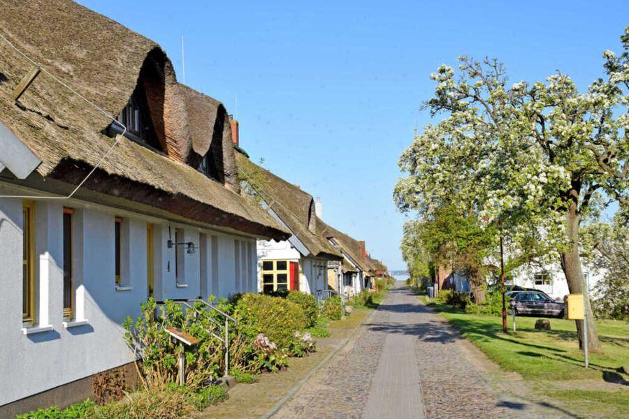 Ferienwohnungen im Fischerdorf und unterm Reetdach