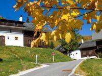 Feriendorf KIRCHLEITN - Dorf GROSSWILD, NockBERGE 35m² GIPFEL 1 in Bad Kleinkirchheim - kleines Detailbild