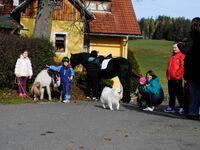 Gasthof- Gästehaus Seeblick vlg. Kuchlbauer, Naturparkwohnung in Zeutschach - kleines Detailbild