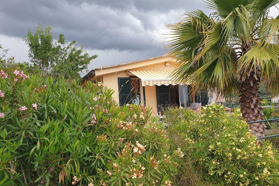 Der Blick auf Haus, Meer und Wald