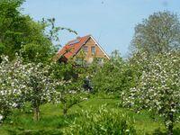 Ferienwohnung Elbblick in Drochtersen - kleines Detailbild