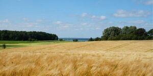 Kaiser, Landhaus Esgrus Ferienwohnung Landblick, FW Landblick in Esgrus - kleines Detailbild