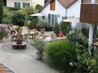 Im Linsenbusch - Ferienwohnung Goldschmied in Ruppertsberg - kleines Detailbild