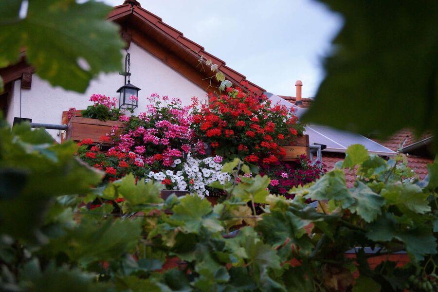 Balkon Goldschmied