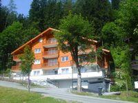 Apartment Luma an der Schiwiese, 4 Zimmerapartment Top 4 in Bad Hofgastein - kleines Detailbild