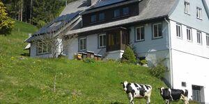 Ferienwohnung Black Forest Stube in Furtwangen - kleines Detailbild