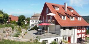 Ferienhaus Botterell direkt am Bodensee, Dachgeschosswohnung mit Spitzboden bis 5 Personen in Öhningen-Kattenhorn - kleines Detailbild