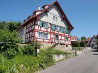 Ferienhaus Botterell direkt am Bodensee, Erdgeschosswohnung bis 4 Personen in Öhningen-Kattenhorn - kleines Detailbild