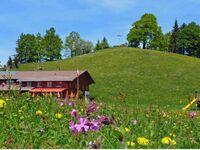 Alpengasthof Brüggele, 8-Bett Schlafraum mit Etagendusche + Waschraum in Alberschwende - kleines Detailbild