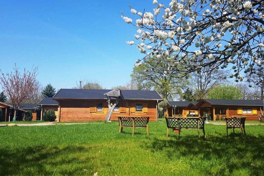 Blick in den Garten mit den Holzhäusern