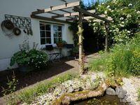 Ferienwohnung im Naturgarten Ingwersen Bed & Garden in Waldbröl - kleines Detailbild