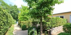 Ferienwohnungen direkt am Fleesensee SEE 9690, SEE 9692 - Kirsche in Untergöhren - kleines Detailbild