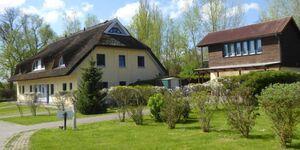 Reetdachhaus Holunder 3, Kamin, 3 Schalfzimmer, W-Lan, REH Holunder 3 in Poseritz OT Puddemin - kleines Detailbild
