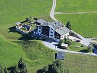 Wiesenhof, Alpenrose in Kaunerberg - kleines Detailbild