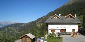 Wiesenhof, Edelweiss in Kaunerberg - kleines Detailbild