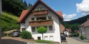 Ferienwohnung Am Rebberg, Ferienwohnung in Schuttertal-Dörlinbach - kleines Detailbild