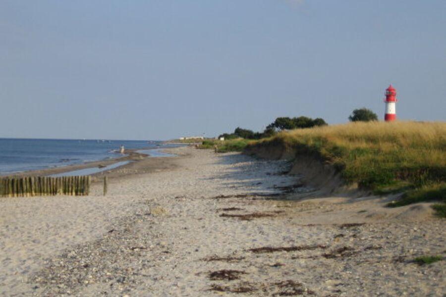Strand bei Falshöft