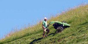 Haus Häsischa - Biobauernhof im Biosphaerenpark -, Ferienwohnung Sorbus Austriaca in Raggal-Marul - kleines Detailbild