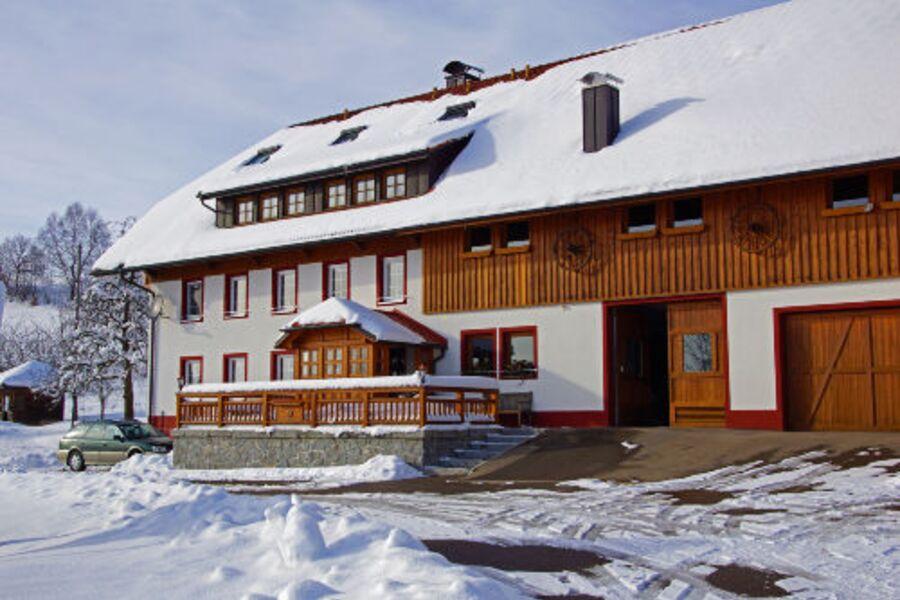 Winter in Wolpadingen
